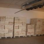 Plantalgarve_Câmaras de germinação (1)